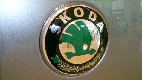Skoda va produce în India un SUV de mărime medie