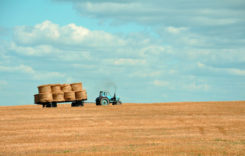4 verificări pe care trebuie să le faci înainte să cumperi un utilaj agricol